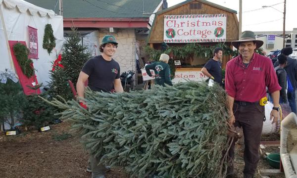 Big John S Christmas Trees